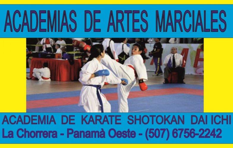 Academias de Karate  y Artes Marciales