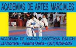 Escuelas de karate